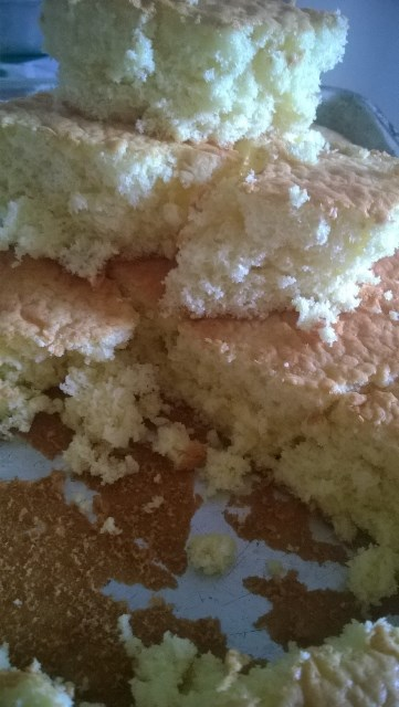 A receita rende 28 pedaços de bolo em assadeira média - Foto: Karla Lascaleia