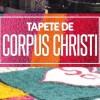 corpus embu