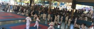 Foto 01 - Secretaria de Esportes realiza 1ª Copinha Taboanense de Karatê no Cepim