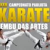 para_o_site karate embu
